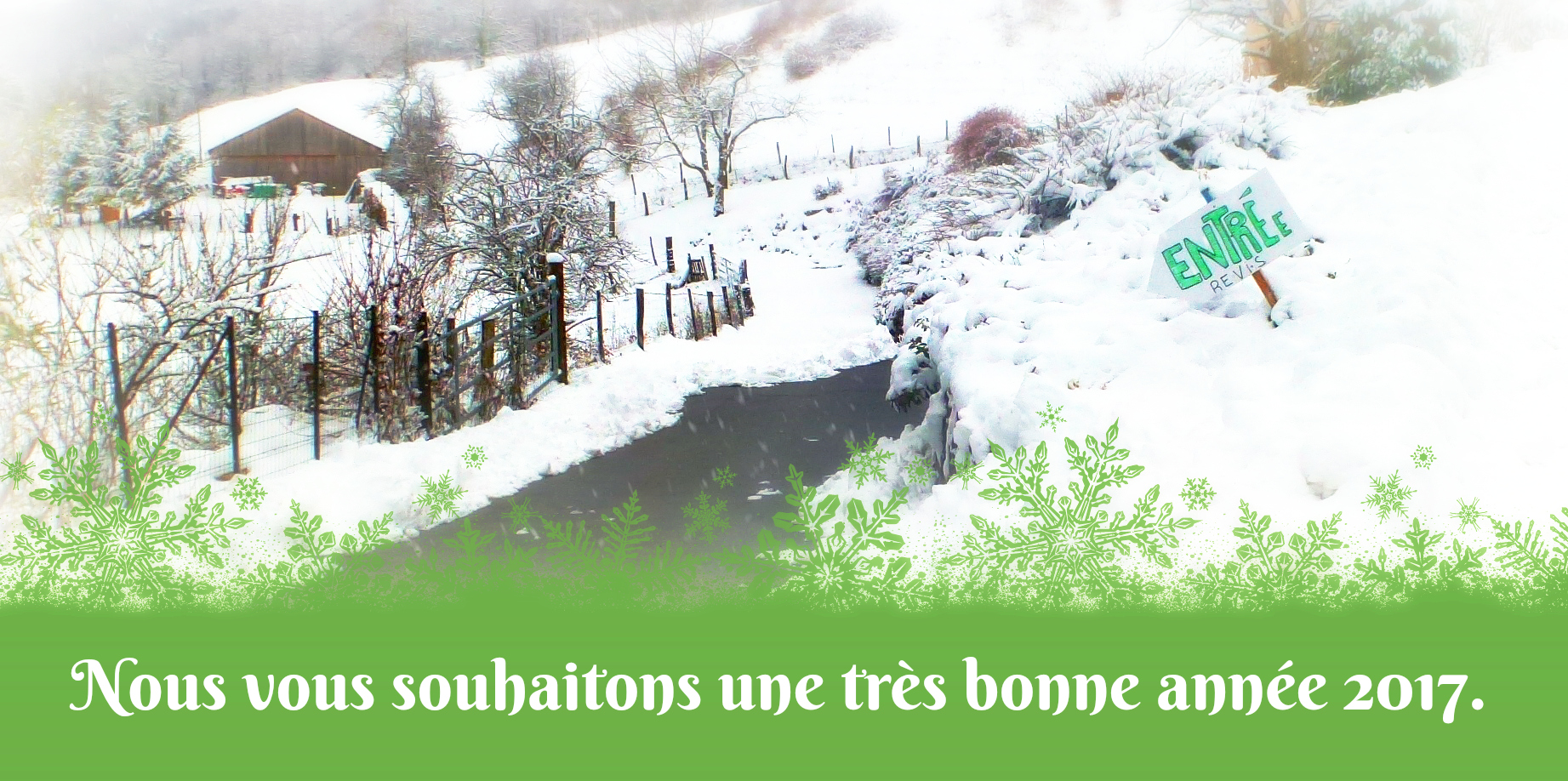 2017-01-neige-voeux2